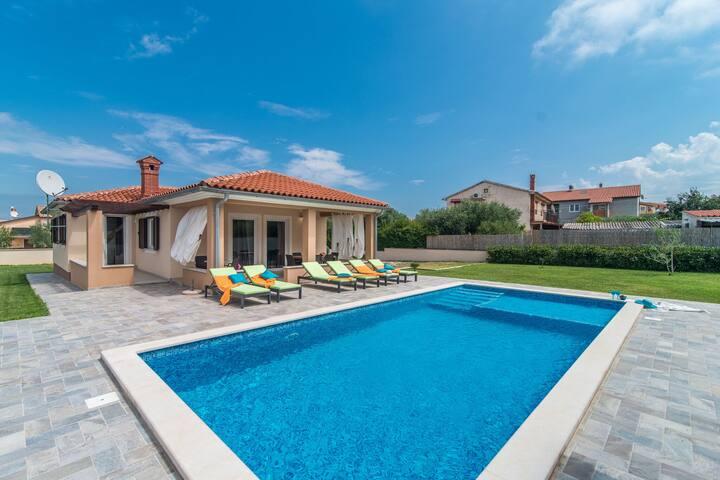 Stylish Villa in Ližnjan with Swimming Pool