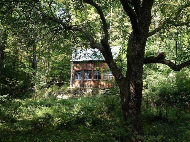 Cabin in the Woods; off-grid - Sharon - Hytte