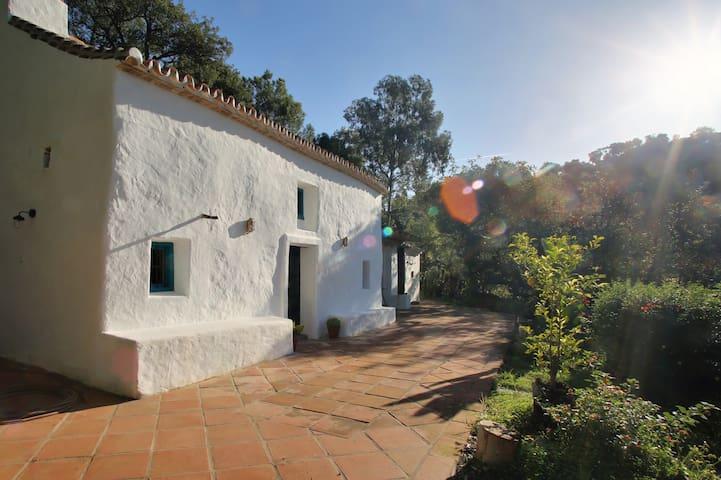 Costa del sol villa with pool - Casares