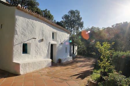 Costa del sol villa with pool - Casares - Hus