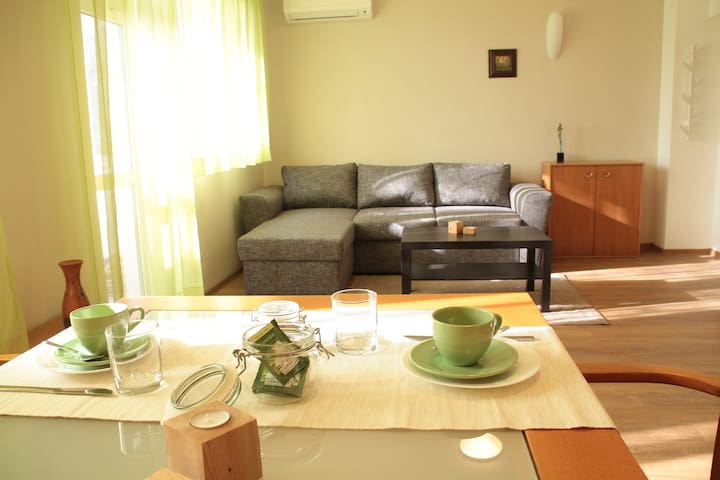 """Cosy apartment """"SUNNY FLAT"""" - Plovdiv - Appartement"""