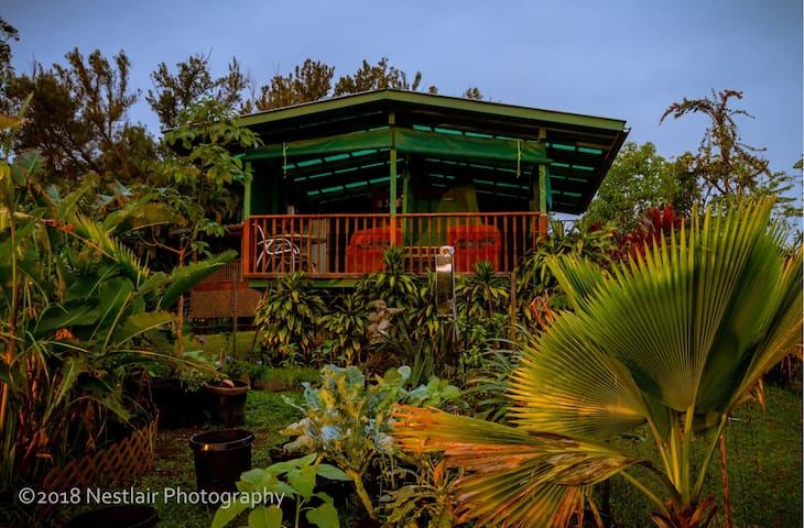 View of the makai (ocean) facing side from the garden. Idyllic and privite space open to the beauty of nature.