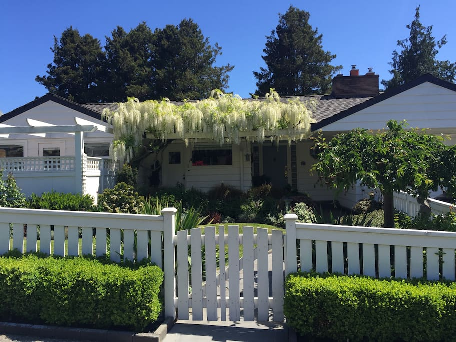 Charming Mid-century with lovely garden. Enclosed yard and decks w/outdoor dining/BBQ