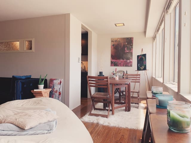 Plaza apt COZY for work or couples WALK to it all!