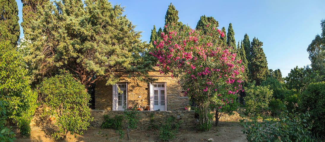 Farmhouse in Andros - Ilianthos