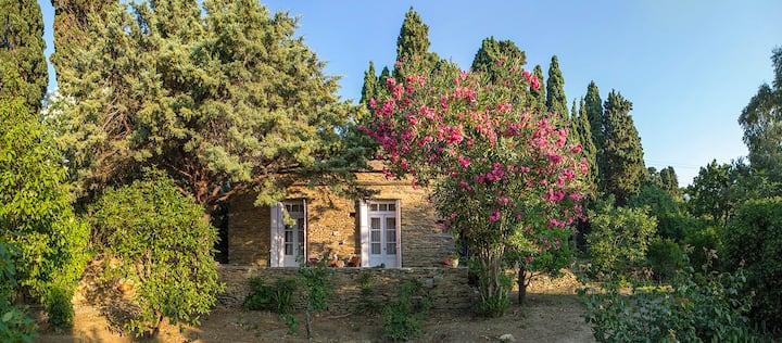 Farmhouse in Andros - Ilianthos