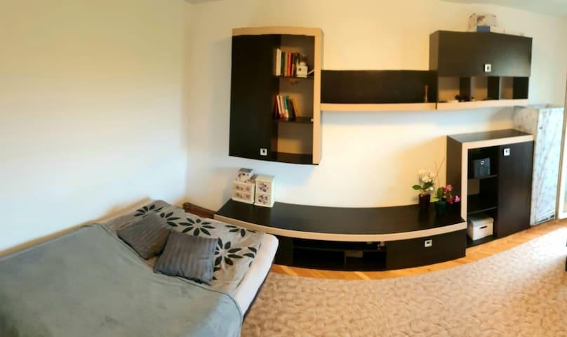 Sunny Spacious Bedroom Close To City Center