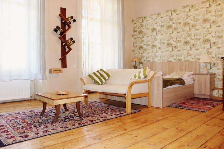 Solo Room Apartment