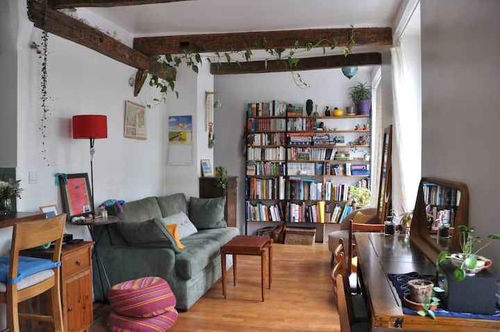 Cosy 1 bd apt in lively 18th dist. near Montmartre