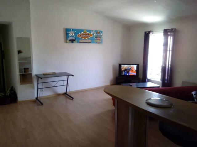 appartement 2 pièces de 48 m² au cœur de ville