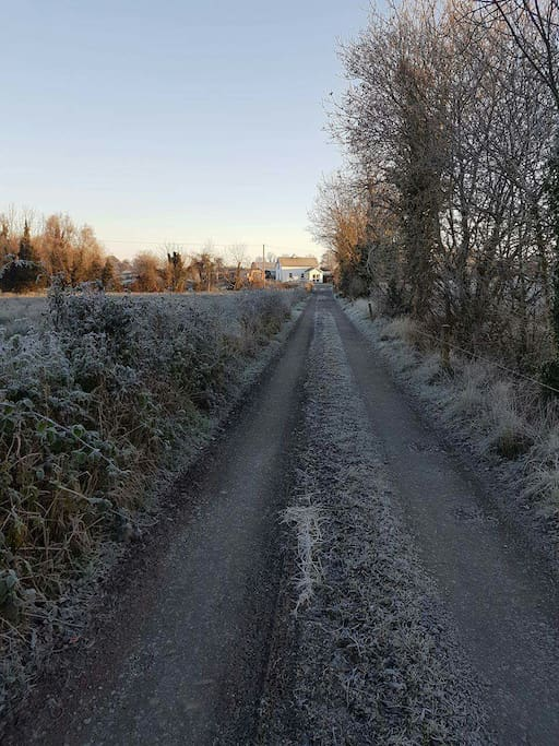 Private road going into the cottage