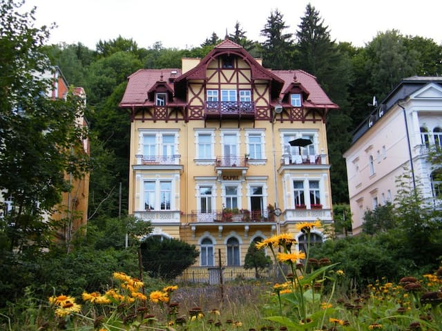 Flat in central, historic villa - Mariánské Lázně - Apartamento