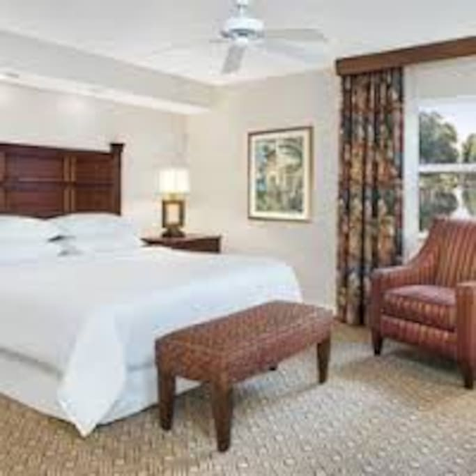 Master bedroom with a large king size bed (sample picture)