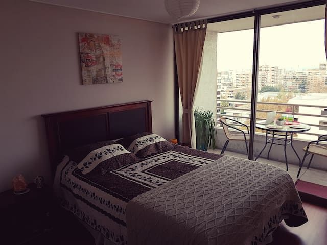 Enjoyable apt. with stunning views of the Andes! - Providencia - Departamento