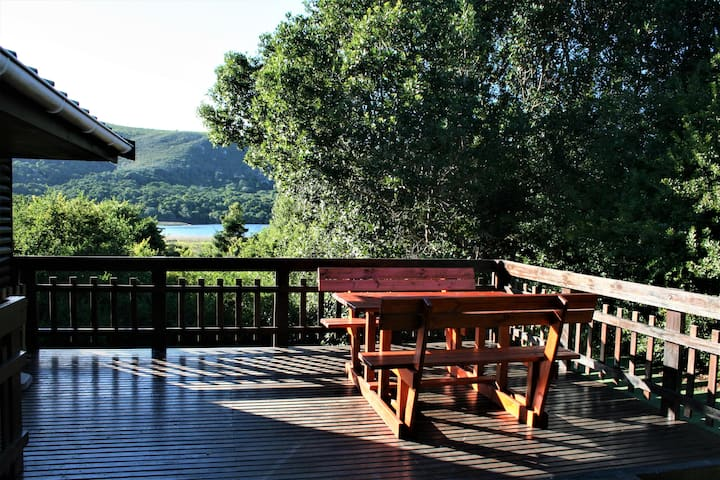 Forest living with a view - tranquil & convenient