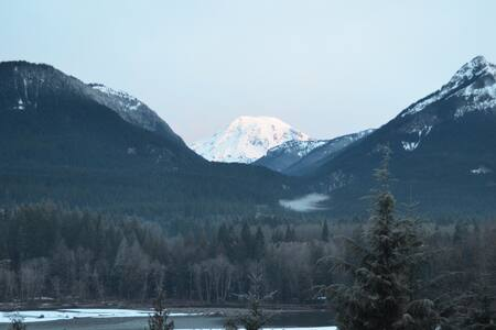 Volcano View Cabin - Packwood - Hytte