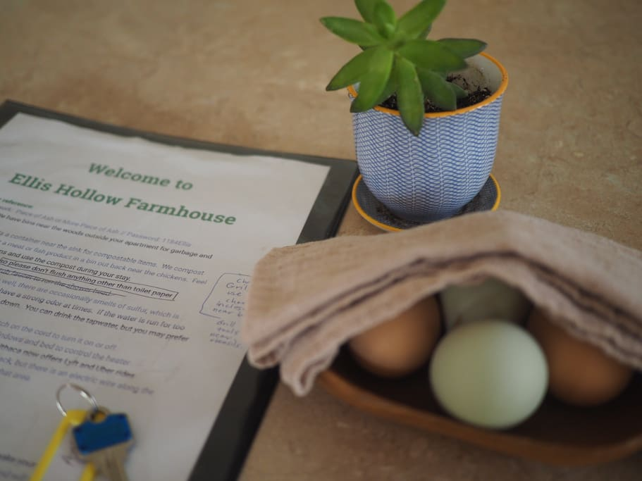 Fresh eggs from hens on property await your arrival.  A binder with some of our favorite places to eat and see in the area