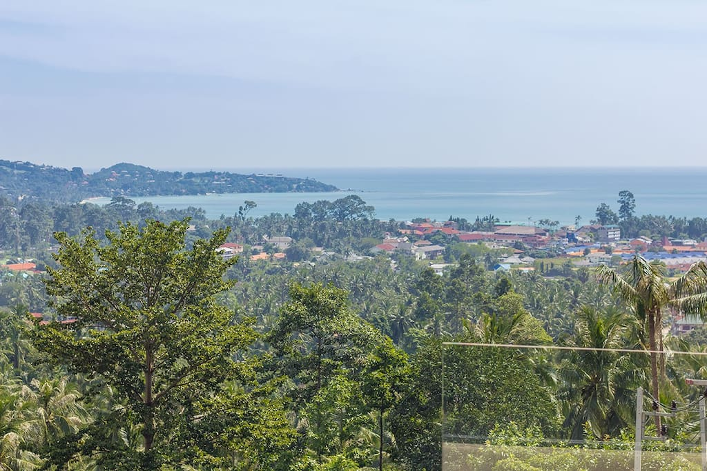 Panoramic view on the Lamai bay and the splendid coconut grove