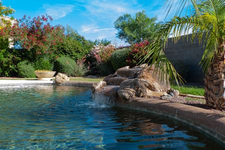 Phoenix Arizona Oasis Relaxation - Surprise