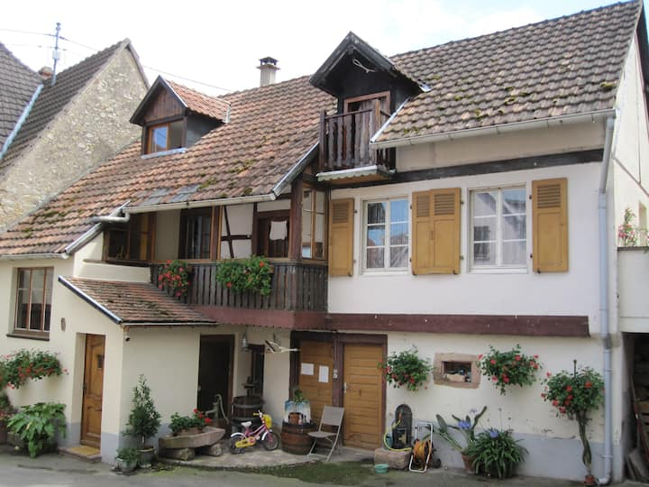Grande maison Alsacienne***/7p.clim.Colmar rt.vins
