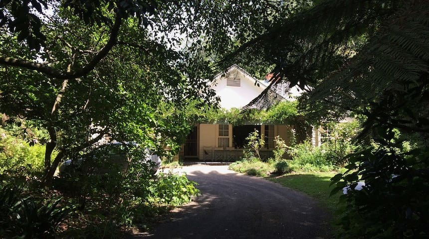 Eilean Donan Gardens Tarra Valley
