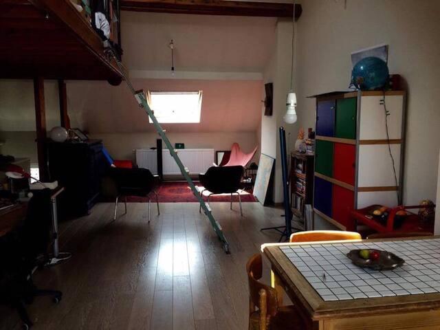 Cosy & luminous apartment near Midi Station - Forest - 公寓