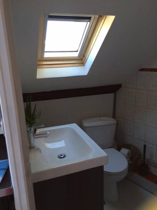 petite salle de bain avec toilette et vélux