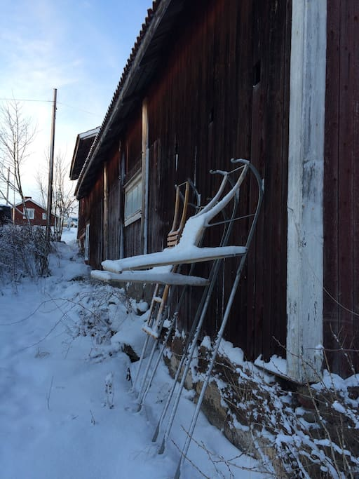 Kick sleds behind the barn, perfect on the ice or to get around in the village