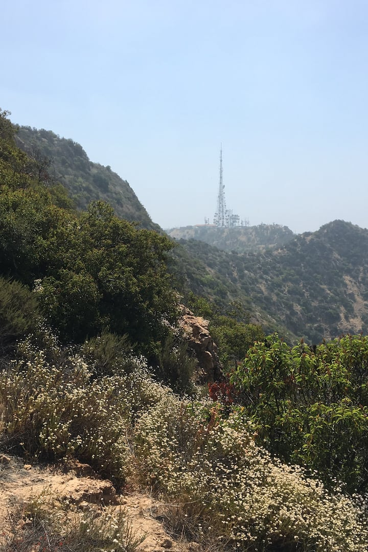 Rugged beauty of Griffith Park