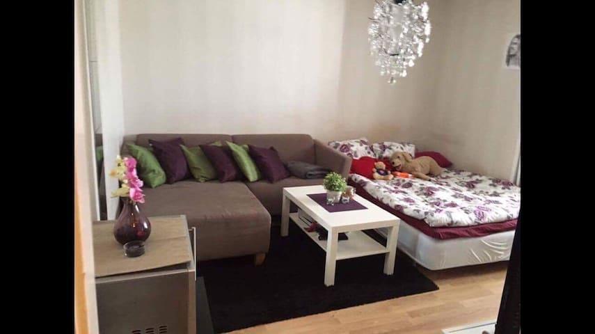 Cozy studio apartment - Uppsala