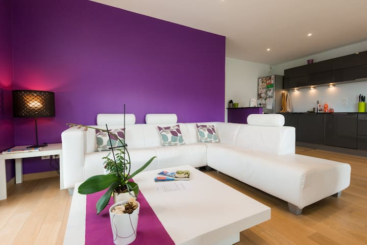 Nice flat between Geneva, Annecy, Alps and Jura - Viry - Wohnung