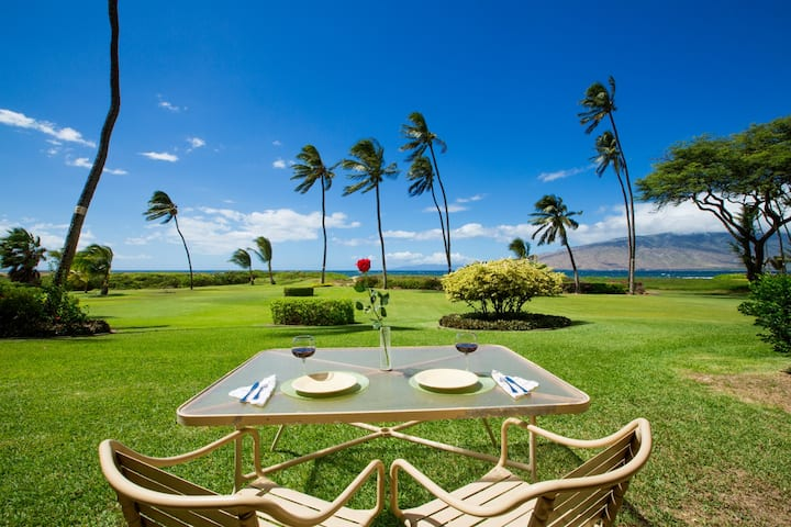 Romantic Maui Getaway! ~~ Ocean Front! ~~ Maui