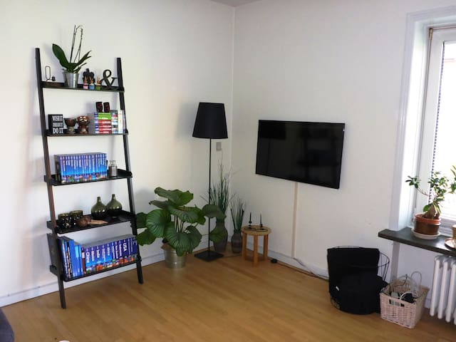 Big apartment in nice environment - Aarhus - Leilighet
