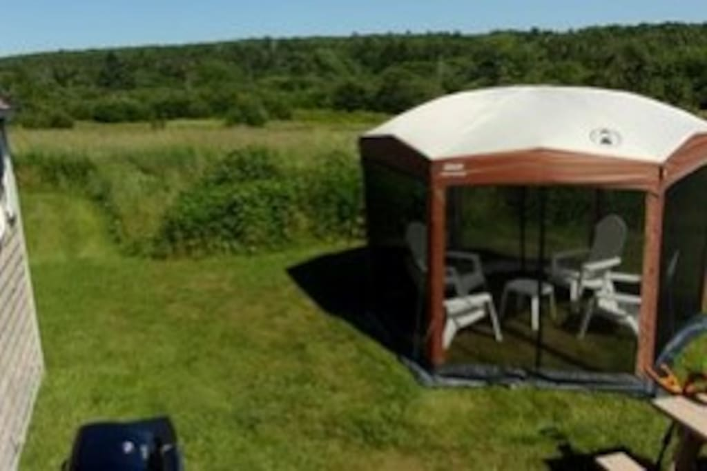 screen tent sitting area