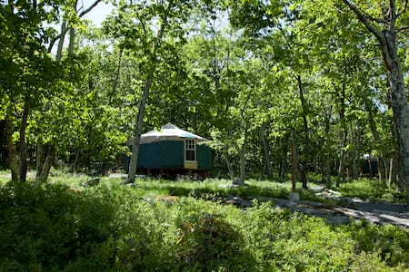 20' Yurt at Arts On Site Residency & Retreat