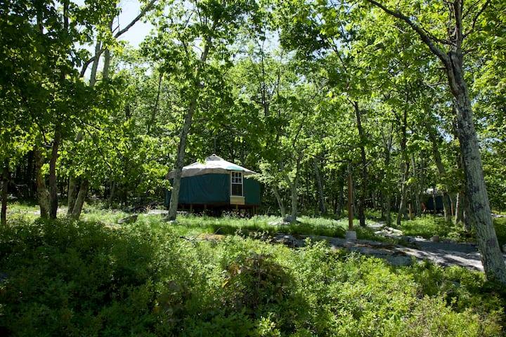 20' Yurt at Arts On Site Residency & Retreat