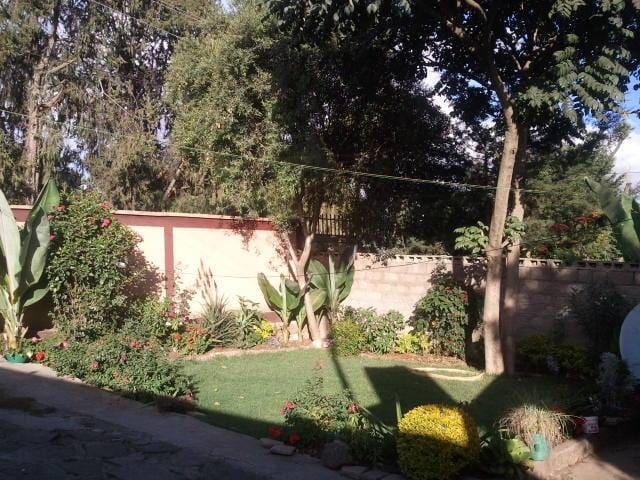 Mam's House - Addis Ababa - House