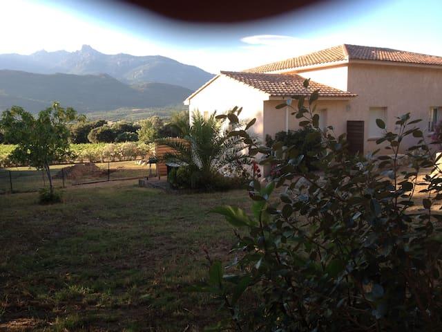 Studio Corse du Sud région figari - Figari - Pis