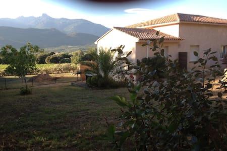 Studio Corse du Sud région figari - Apartemen