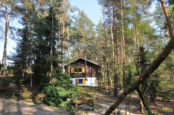 Natururlauberhaus-Wendland - Höhbeck