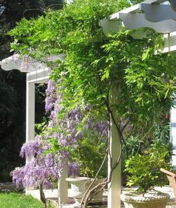 Hamelin Bay Beach House - Hamelin Bay - House