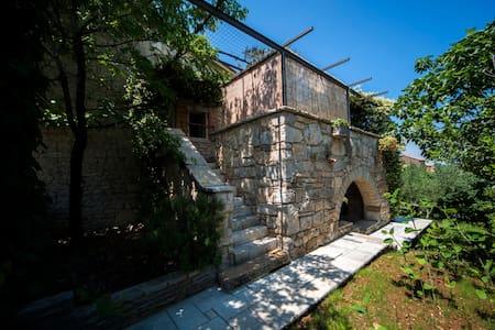 Villa Oliva in the heart of Istria