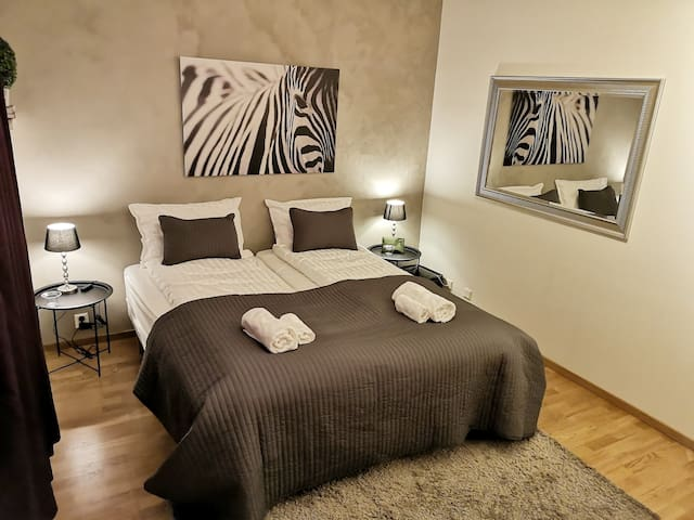 Modern Studio Apartment - Great Location!