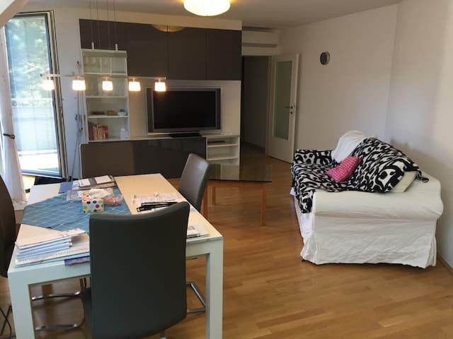 Apartment mit Dachterrasse im Grünen Wien's