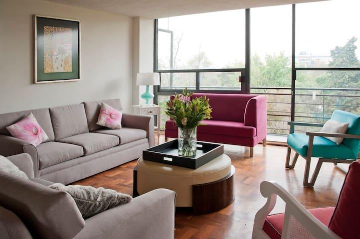 Best área in Condesa - Ciudad de México - Appartement