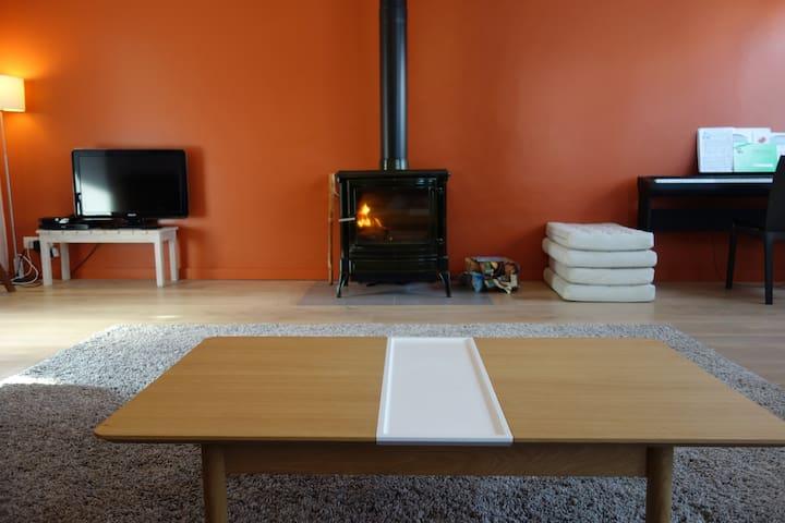 le salon et son poele