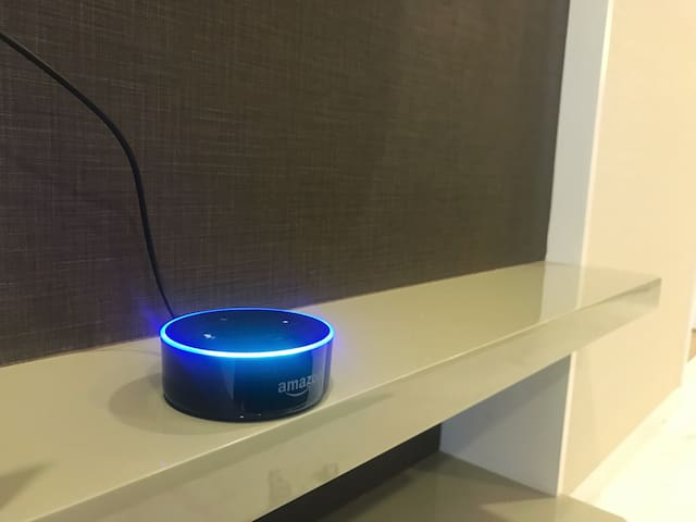 Amazon echo smart speaker for music and questions