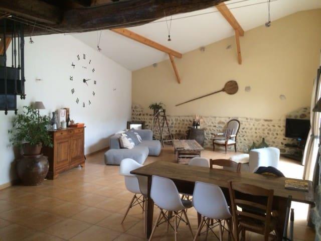 Maison de ville avec jardinet st denis centre - Saint-Denis-en-Bugey - Casa