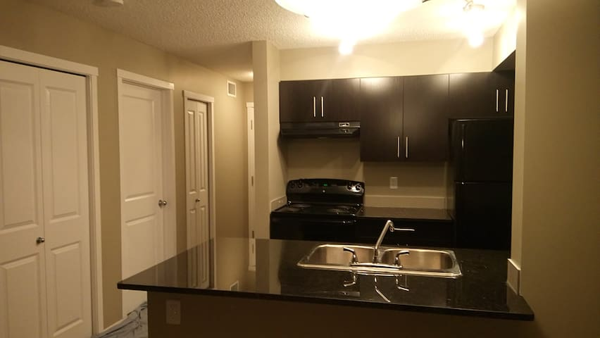 ENTIRE ,BRAND NEW CONDO FOR YOURSELF (NO SHARING) - Edmonton - Osakehuoneisto