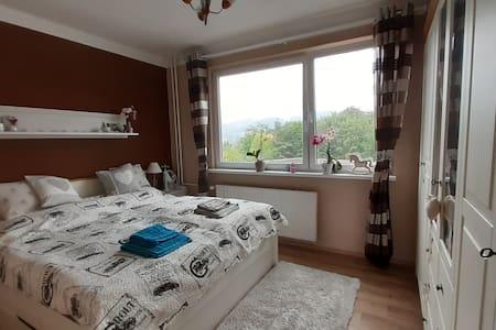 Liberec - cosy apartment
